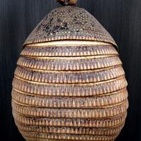 ANCIENNE CARAPACE DE TATOU